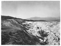 Mammoth Hot Springs (YellowstoneNPS) Tags: jackson heritagemuseum gardiner mt usa