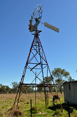 10 foot IBC Geared Simplex windmill on an Alston well tower; Bromelton, Queensland (sarracenia.flava) Tags: ibc intercolonial boring company windmill alston tower bromelton beaudesert queensland australia