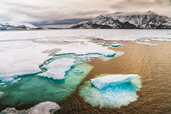 The Arctic - Ice Floes - Canadian High Arctic (Vivienne Gucwa) Tags: arctic ice sheet icesheet icefloe canada travel travelphotography viviennegucwa viviennegucwaphotography arcticlandscape arcticsea baffin icebreaker kapitankhlebnikov quarkexpeditions higharctic north