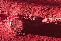 4Y4A3490 (francois f swanepoel) Tags: anotherbrickinthewall baksteen baksteenmuur beton brick concrete final invalshoek laehoek lastsunset lowangle muur paint patina red rooi shadow shisa skadu skaduspel son sun teksture textures trapskag verf wall