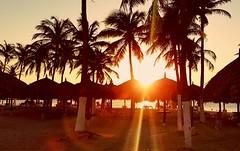 Relax (Gabriel Far) Tags: aruba palmbeach beach relax paradise