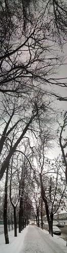 20121208_161348.jpg ©  quirischa