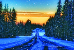 Gratitude (Aspenbreeze) Tags: road winter snow mountains nature rural grandmesa roadscape snowyroad winterroad blueksy coloraod grandmesacolorado platueau aspenbreeze highaltitutde rememberthatmomentlevel1 topphotospots tpslandscape gpsetest