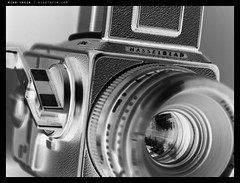 _5015929bw copy (mingthein) Tags: blackandwhite bw macro 6x6 film monochrome digital zeiss t four bokeh availablelight olympus hasselblad carl micro medium format ming zuiko cf 43 omd thirds planar m43 onn zd mft 501c 2880 em5 6028 thein photohorologer micro43 microfourthirds mingtheincom zuiko6028