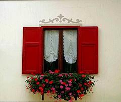 FINESTRELLA IN VAL DI FASSA (cannuccia) Tags: windows rosso paesaggi trentino finestre mfcc gerani 100commentgroup flickraward dwwg 1001nightsmagiccity virgiliocompany nvaldifassa fachadasconencanto2dconcurso32