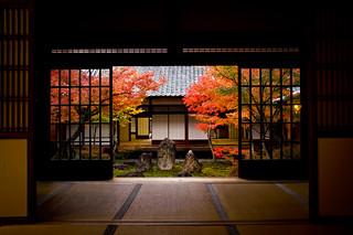 momiji '12 - autumn leaves #19 (Kennin-ji temple, Kyoto)