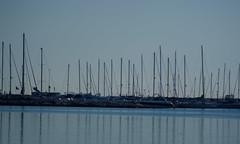 reflections (marcocim) Tags: reflections san italia mare sony barche porto riflessi marche ascoli adriatico tronto a300 benedetto piceno marcocim