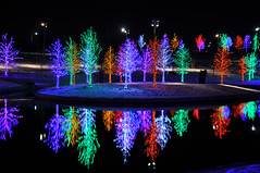 lights galore (moorepix4u2c) Tags: trees tree christmaslights sight addisontexas vitruvianpark lightsparkchristmaslightspretty