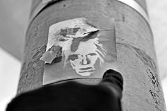 Warhol (damonabnormal) Tags: street city urban blackandwhite bw streetart philadelphia graffiti nikon december urbanart andywarhol warhol philly graff phl 2012 urbanite d7000