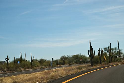 near Phoenix, AZ