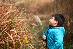 _MG_3753 (baobao ou) Tags: family boy kids funny asia child 52weeks familygetty2011