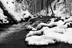 PrienitzFall (all martn) Tags: schnee panorama snow dresden 28mm automatic m42 singlespeed pugsley surly f28 heide necromancer dresdner fatbike