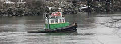Little Tug on the Fraser River (Robert Bortolin) Tags: canada vancouver canon bc surrey quay tug fraserriver newwestminster towboat logboom westminsterquay pullaway frasersurrey