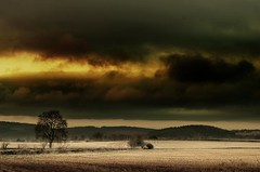 Riders of the storm (Eric Goncalves) Tags: winter storm cold color tree nature field clouds gloucestershire sunsetting nikond7000 rememberthatmomentlevel1 rememberthatmomentlevel2 rememberthatmomentlevel3