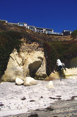 sands and gears, oh how the daisies bloom (oce∆ndust) Tags: ocean california beach nature vertical photography sand scene verticalphotography