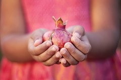 giving ({life through the lens}) Tags: red fruit holding hands child pomegranate gift giving generosity