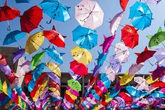 _MG_8087 (Antonio Balsera) Tags: paraguas jordania umbella aqqaba áqaba