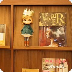 Blythe on bookshelf