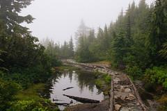 IMG_4036.jpg (Backpacking With Bacon) Tags: washington northerncascades hiking mtpilchuck granitefalls unitedstates us