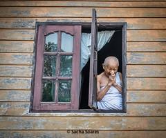 Nun_in_Window (sachasplasher) Tags: nun buddhist monk buddhism blessing window thailand robe open bless blessed pray happy