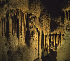 Mammoth Caves (Cocoabiscuit) Tags: cocoabiscuit olympus em5 kentucky mammothcaves nationalpark caves
