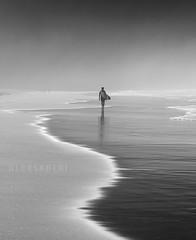 Surfer (alex saberi) Tags: itamambuca praiaitamambuca surfer surf brasil brazil saopaulo ubatuba praia coast mar litoralnorte serradomar mataatlantica atlanticforest