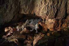 Grotte di Stiffe_49