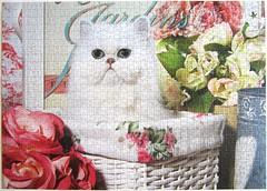 Katze im Korb (Jean-Michel Labat) (Leonisha) Tags: puzzle jigsawpuzzle cat chat katze persiancat perserkatze flowers blumen korb basket