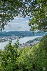DSCF2896 Kopie (kurvenalbn) Tags: august erpel erpelerley sommer rheinland rheinlandpfalz deutschland de