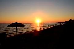 The last sunshade (only_sepp) Tags: tramonti sole mare martirreno mediterraneo imbrunire spiaggia bagnasciuga follonica ombrelloni allaperto cielo
