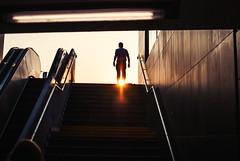 pinhole (ewitsoe) Tags: sunrise man topofstairs poznan ronodkaponiera polska poland europe ewitsoe nikond80 35mm street urban cityscape city life walking pedestrian light stairs shadows