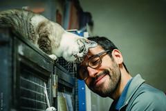 Vincent + Sigou = <3 (Marie Audo) Tags: chat cat portrait rescue indoors