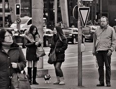 On the Street (heiko.moser (+ 9.600.000 views )) Tags: sw schwarzweiss street strasse streetart streetfotografie schwarzweis streetportrait streetfoto people personen publicity person portrait leute menschen monochrom mono man mann women woman entdecken einfarbig eyecatch eyecontact discover teen young youngwoman noiretblanc nb nero bw blackwhite blancoynegro canon candid city heikomoser