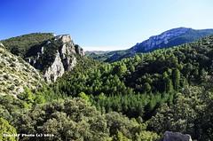 Montaas de Castelln (tonomf) Tags: amador escavia bejs castelln espaa spain paisaje landscape montaas mountains nikon nikond5100 polarizador rboles bosque pinos carrasca