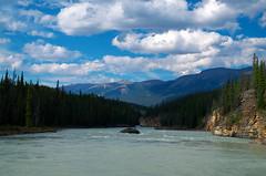 Down River (Kristian Francke) Tags: alberta canada athabasca river landscape forest mountain jasper national park summer pentax tamron green blue
