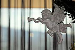 cherub (overthemoon) Tags: tree window angel 50mm schweiz switzerland suisse decoration christmastree cherub svizzera vaud romandie imagepoésie