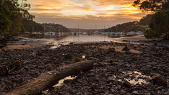 Sailors Bay (James.Breeze) Tags: ocean longexposure orange seascape clouds sunrise landscape log rocks raw seascapes cloudy sydney australia nsw saltwater tidalflat castlecrag canonef1740mmf4l bestofaustralia jamesbreeze