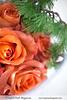 Contemporary Holidays design {Oriental vibe} (Scrumptious Venus) Tags: roses snow modern holidays contemporary hurricane zen oriental flowerarrangement floraldesign freshflowers rounddesign orientalpine lespritsudmagazine holidaysdesign wwwlespritsudmagazine