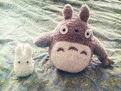 Totoro has a little buddy now! (meow alix) Tags: animal stuffed totoro