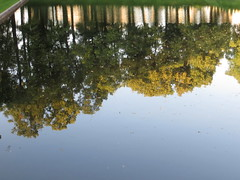 SPB New Summer Garden Carp Pond reflections (robert_m_brown_jr) Tags: trees summer reflections garden stpetersburg pond russia july sanktpeterburg whitenights summergarden   carppond letniysad  july2012