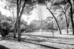 Infrared Park (RGBphotography1) Tags: park bw parco nature ir infrared riccione cokin p007