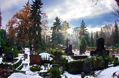 Berlin, Luisenstadt-Friedhof 3 (paspog) Tags: schnee friedhof berlin cemetery germany deutschland neige allemagne sno cimetière luisenstadt luisenstadtfriedhof