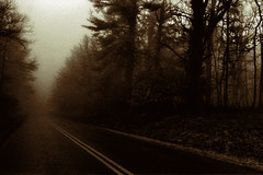 Down a Long Road (dbnunley) Tags: winter art monochrome fog forest photography woods fine blueridgeparkway roadway canoneos60d