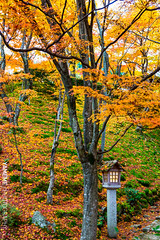 常寂光寺 Jojakko-ji / Kyoto, Japan (yameme) Tags: travel japan canon eos maple kyoto arashiyama 京都 日本 嵐山 kansai 旅行 sagano 關西 楓葉 常寂光寺 嵯峨野 石燈籠 jojakkoji 24105mmlis 5d3 5dmarkiii