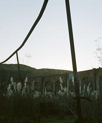 (john daniel reiss) Tags: sf ca sunset green abandoned 120 film landscape graffiti san adventure growth medium format lush pentacon bruno 2012 roundhouse sixtl