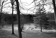 Frio (unflux) Tags: trees lake cold weather nikon frio weinberg unflux d80