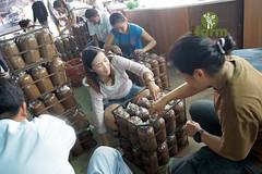 สอนเพาะเห็ดเศรษฐกิจ นนทบุรี
