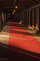 The Red Carpet (San Francisco Gal) Tags: california light shadow bench nationalpark log entrance lodge walkway redcarpet ahwahnee