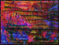 Fishy Drawing (Tim Noonan) Tags: digital photoshop testure colour drawing fish abstract waves lines surrealist 3d awardtree maxfudge vividimagination shockofthenew exoticimage artdigital hypothetical netartii maxfudgeawardandexcellencegroup sharingart stickybeak ultramodern