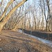 "Illinois Hunting Land for Sale • <a style=""font-size:0.8em;"" href=""http://www.flickr.com/photos/66358149@N06/8427457819/"" target=""_blank"">View on Flickr</a>"